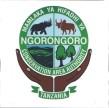 Ngorongoro_Logo